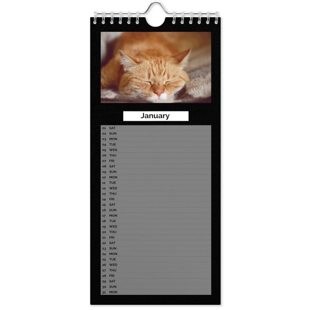 Slim Poster Cat Daily Agenda